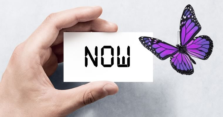 Now Card and Butterfly